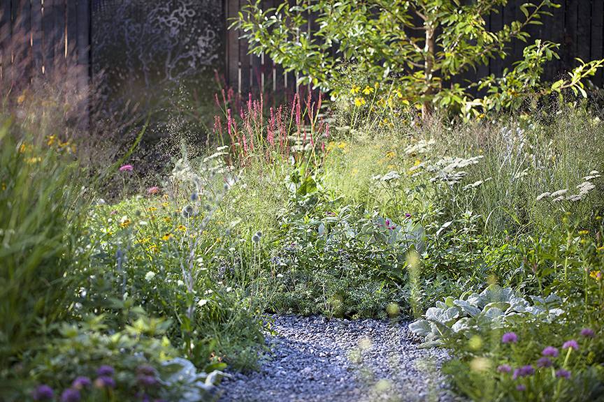 Ian Barker Gardens_Melbourne International Flower & Garden Show 2016_Sally Plottel Photography_Naturalistic Planting and Gravel Path