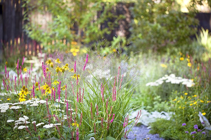 Ian Barker Gardens_Melbourne International Flower & Garden Show 2016_Sally Plottel Photography_Naturalistic Planting
