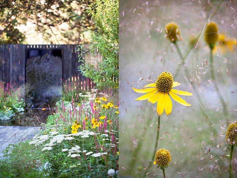 Ian Barker Gardens_Melbourne International Flower & Garden Show 2016_Sally Plottel Photography_Water Feature & Rudbeckia with Eragrostis
